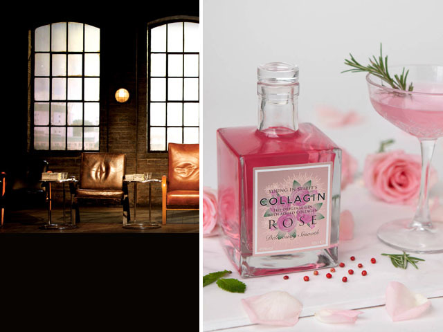 Featured Image for Collagin is the latest gin company to enter Dragons' Den