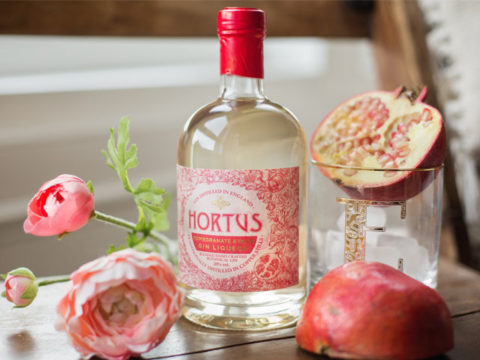 Featured Image for REVIEW: Lidl Pomegranate and Rose Gin Liqueur