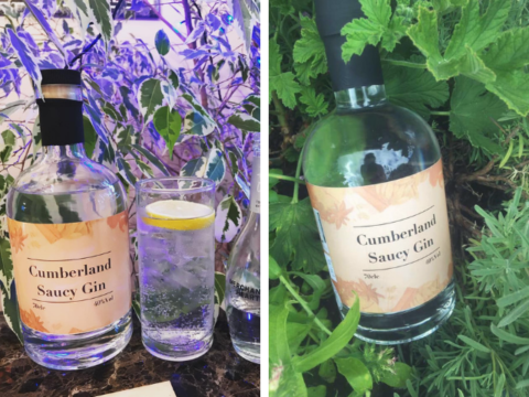 Featured Image for Review: Cumberland Saucy Gin