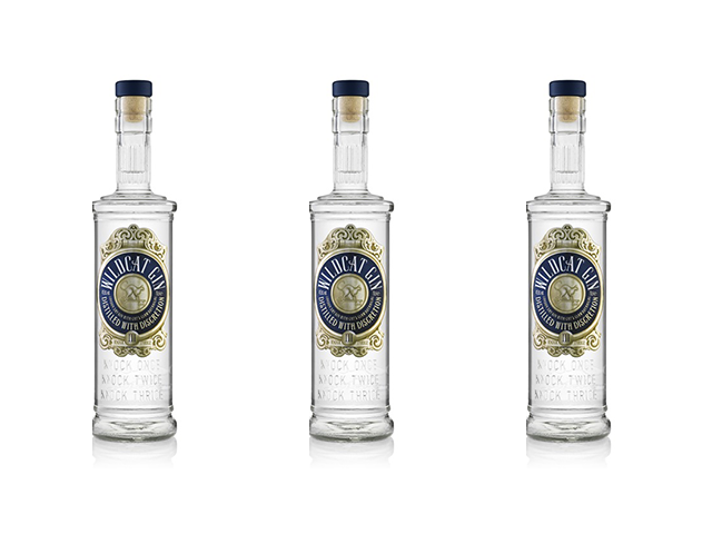 Featured Image for Whyte and MacKay introduces new wild gin