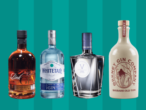 Featured Image for You Need to Include These Gins on Your Christmas Shopping List