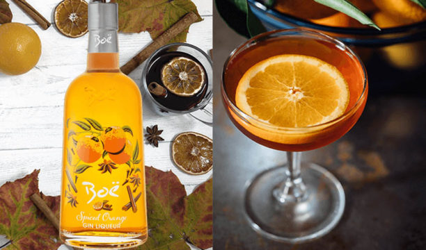 Featured Image for Boë Spiced Orange Gin Liqueur Makes the Dreamiest Spiced Orange Martini