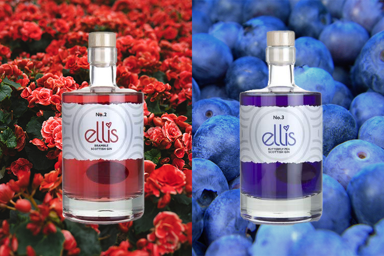 Featured Image for Ellis Gin Got Us Dreaming of Magic Colour Changing G&Ts