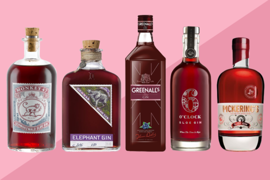 Featured Image for 13 Best Sloe Gins and Where to Find Them