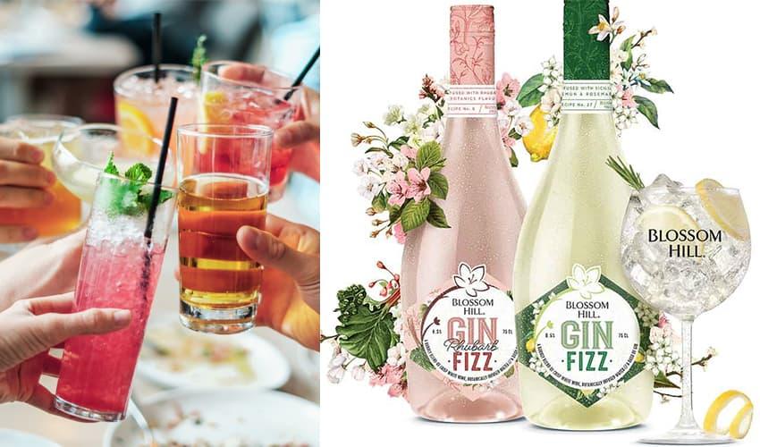 blossom hill gin fusion