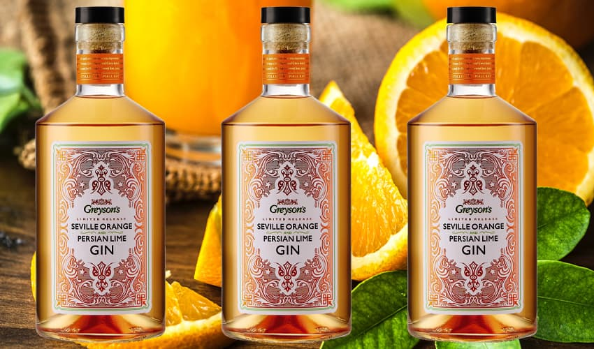 Featured Image for Aldi Takes On Premium Brands With Seville Orange & Persian Lime Gin