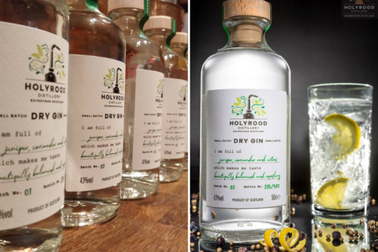 Featured Image for REVIEW: Holyrood Distillery - Holyrood Dry Gin