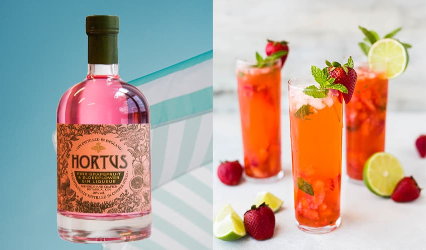 Featured Image for Lidl Has Launched A New Grapefruit and Elderflower Gin Liqueur and It Looks Heavenly