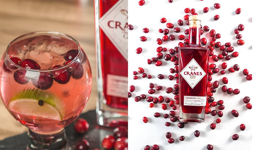 Featured Image for Review: Cranes Cranberry Gin