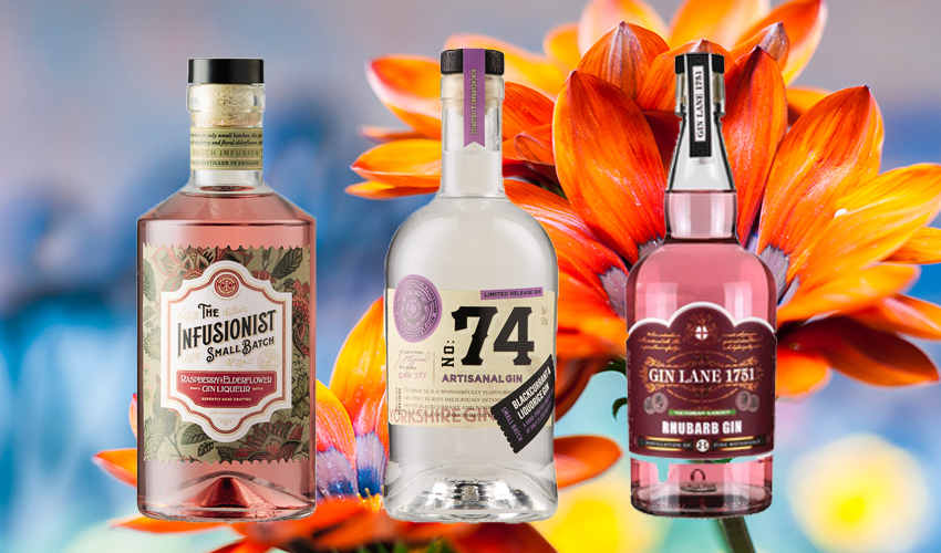 Featured Image for Aldi Is Launching New Gin Flavours Just In Time for Summer