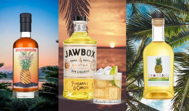 Featured Image for 5 Best Pineapple Gins You Should Try This Summer
