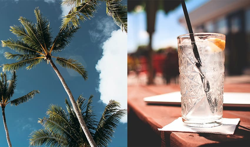 Featured Image for Enjoy The Tom Collins With a Coconut Twist This Summer