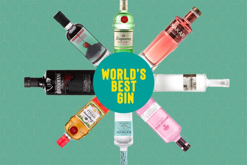 Featured Image for 21 Best Gins from Around The World You Need to Know About for World Gin Day