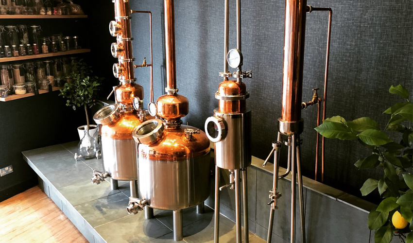 best gin tasting edinburgh