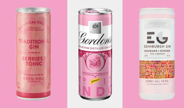 Featured Image for 10 Best Pink Gin Cans That Will Quench Your Thirst This Summer