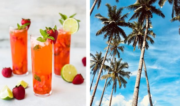 Featured Image for 6 Best Summer Gins to Enjoy Over The Warmer Months