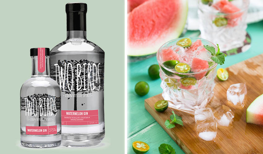 Featured Image for Watermelon Gin Is the Deliciously Juicy Refreshment You Need to Know About