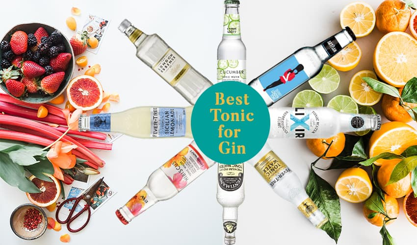 Featured Image for Best Tonic for Gin: Perfect Pairings for Every Type of Gin