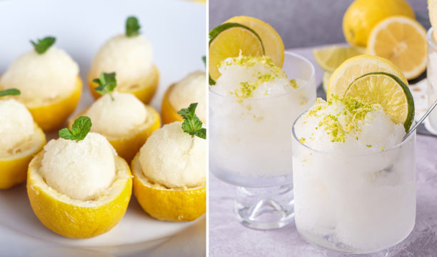 gin and tonic sorbet recipe