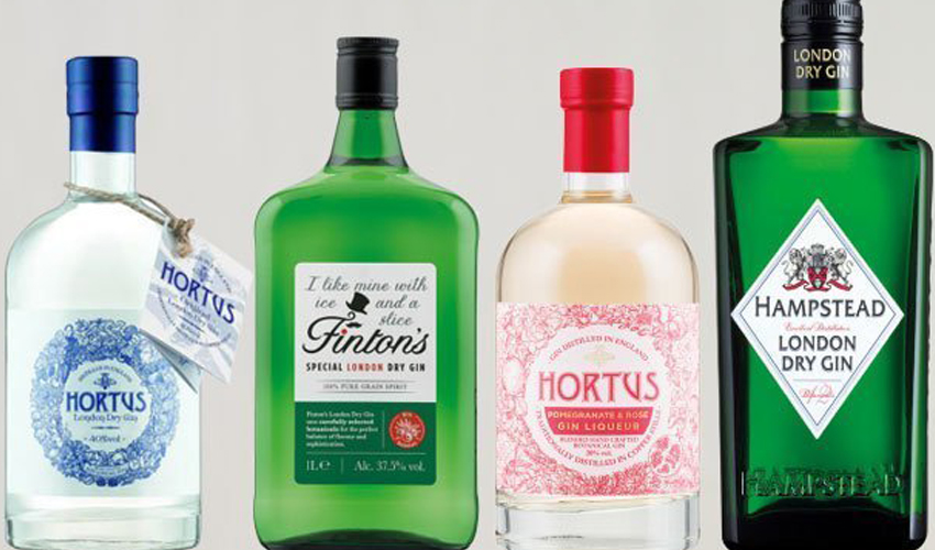 Featured Image for Lidl Gins Beat More Expensive Rivals at Annual Gin Awards