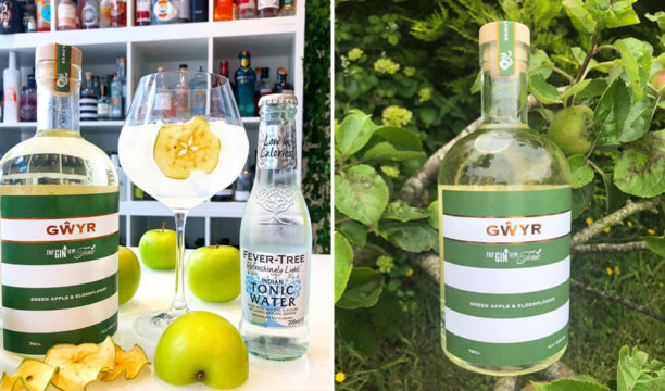 Featured Image for Green Apple and Elderflower Gin Is the Perfect Fresh and Fruity Combination