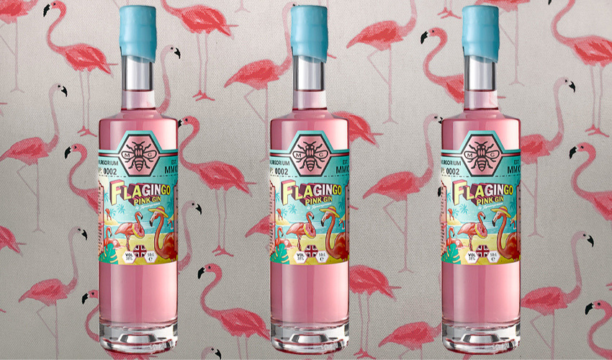 Featured Image for Review: FlaGINgo Pink Gin by Zymurgorium