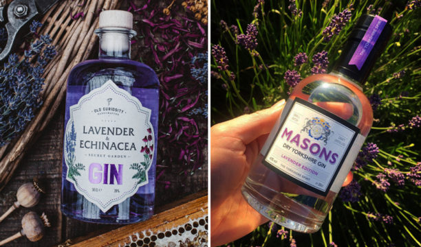 Featured Image for The Ultimate Guide to Buying and Making Lavender Gin