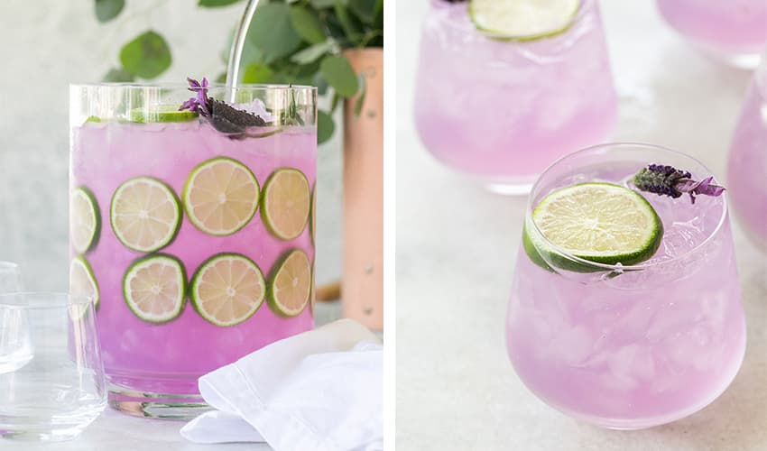 cocktail pitchers