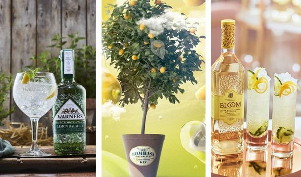 Featured Image for 12 Lemon Gins That Will Add a Delicious Tang to Your Summer G&T
