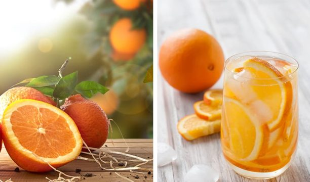 Featured Image for Here's How to Make Irresistible Orange Gin at Home