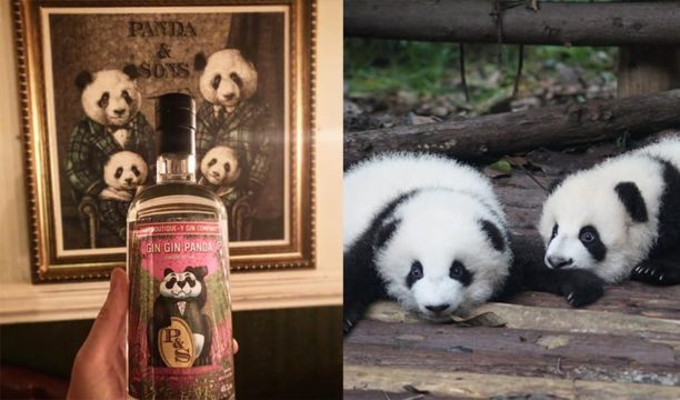 Featured Image for This Exotically Infused London Dry Gin Is Helping Save the Pandas
