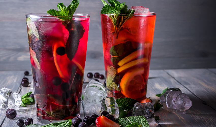 blackcurrant gin guide
