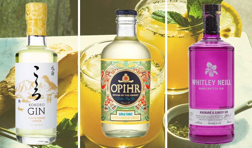 Featured Image for 9 Ginger Gins That Will Add a Punch of Flavour to Your G&T