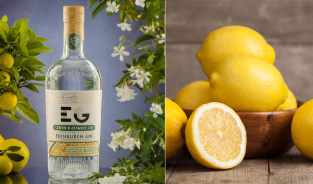 lemon & jasmine gin