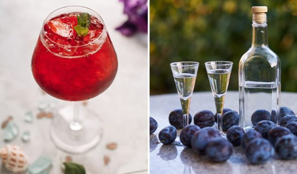 Featured Image for Enjoy the Potent Flavour of This Homemade Plum Gin Recipe
