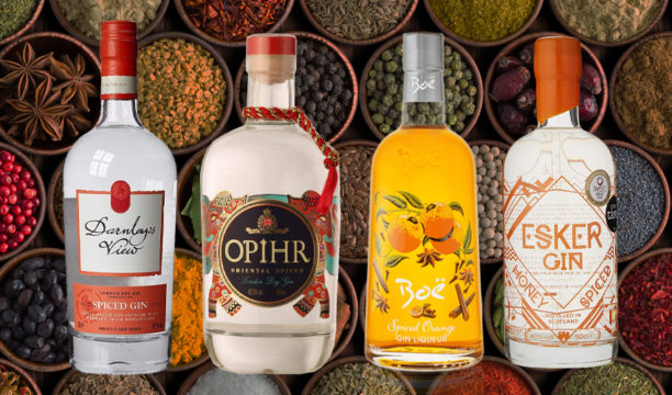 Featured Image for Which Spiced Gin to Buy and How to Make Your Own