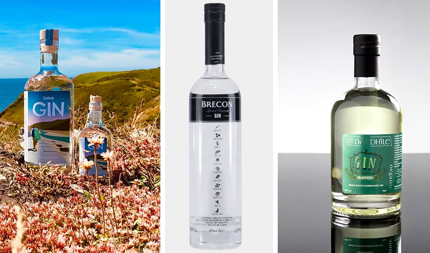 Featured Image for 9 Wonderful Welsh Gins That Are Missing from Your Gin Cart