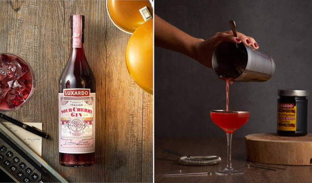 luxardo sour cherry gin review