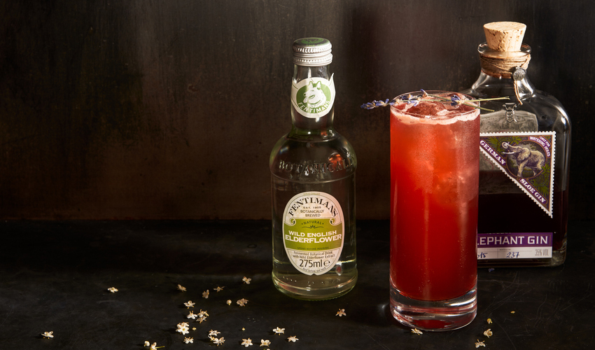 damson gin cocktails