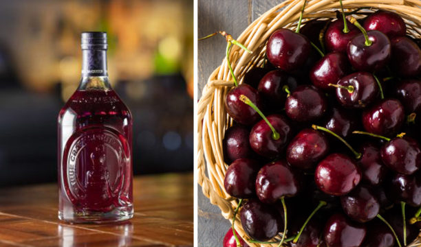 Featured Image for McQueen Launches Deliciously Dark Black Cherry and Vanilla Gin