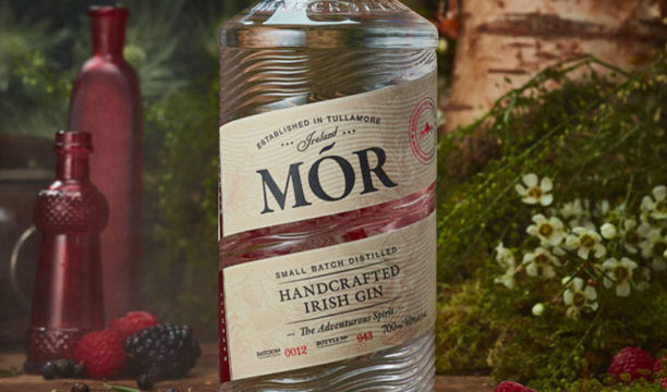 Featured Image for Review: Mor Wild Berry Gin