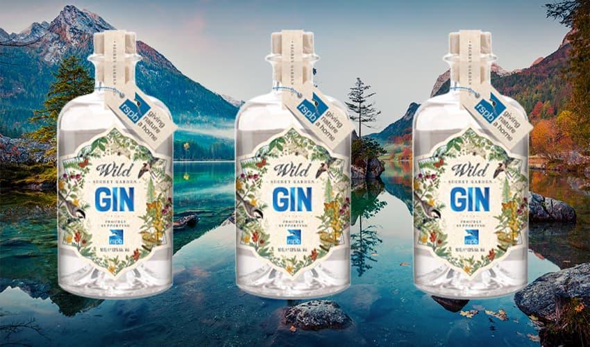 old curiosity wild gin