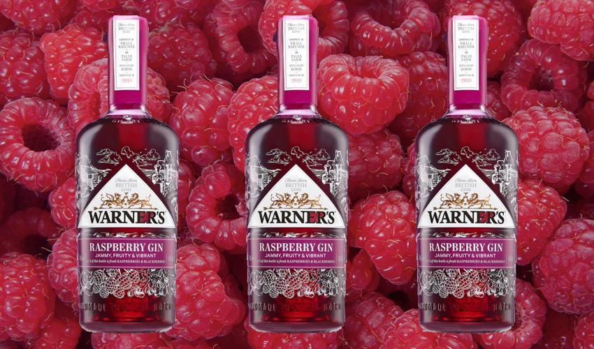 warner's raspberry gin