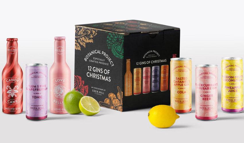 aldi gin selection box