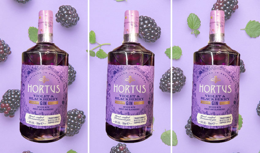 Lidl violet and blackberry gin