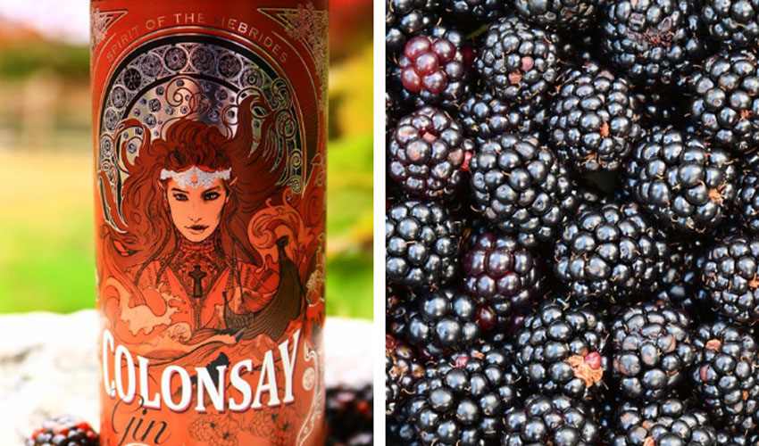 Featured Image for Review: Colonsay Gin Bramble Liqueur