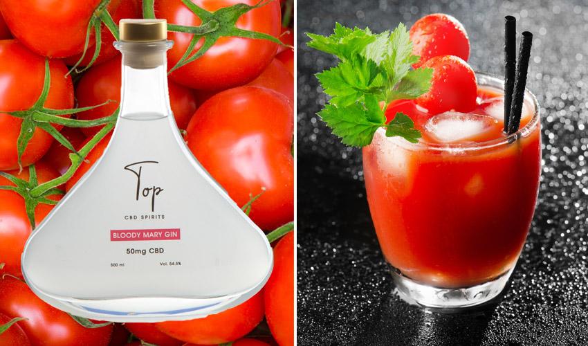 bloody mary gin recipe