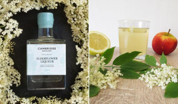 Cambrdge distillery elderflower liqueur