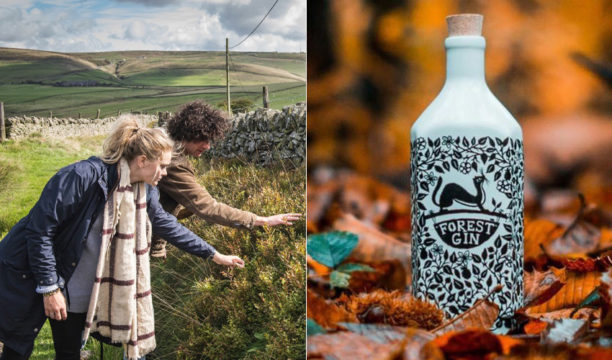 forest gin making
