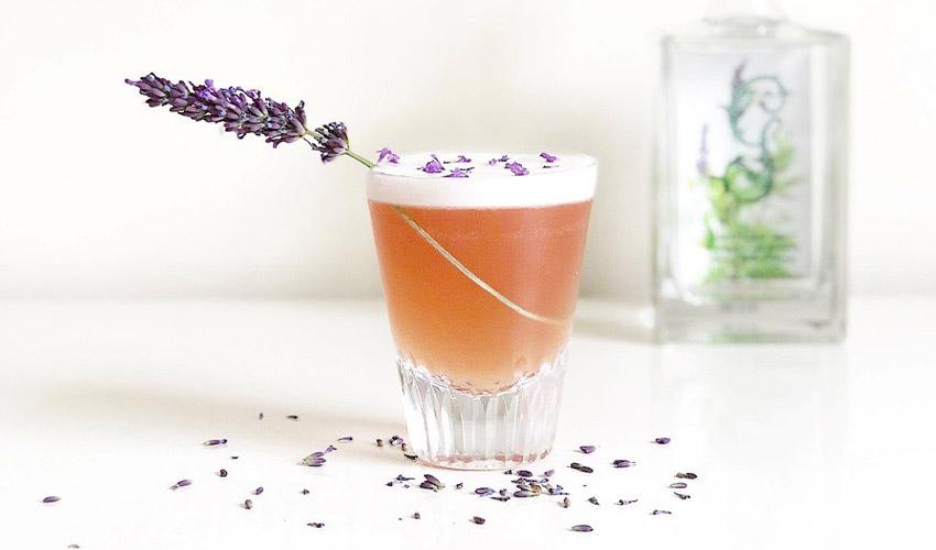 lavender gin cocktail